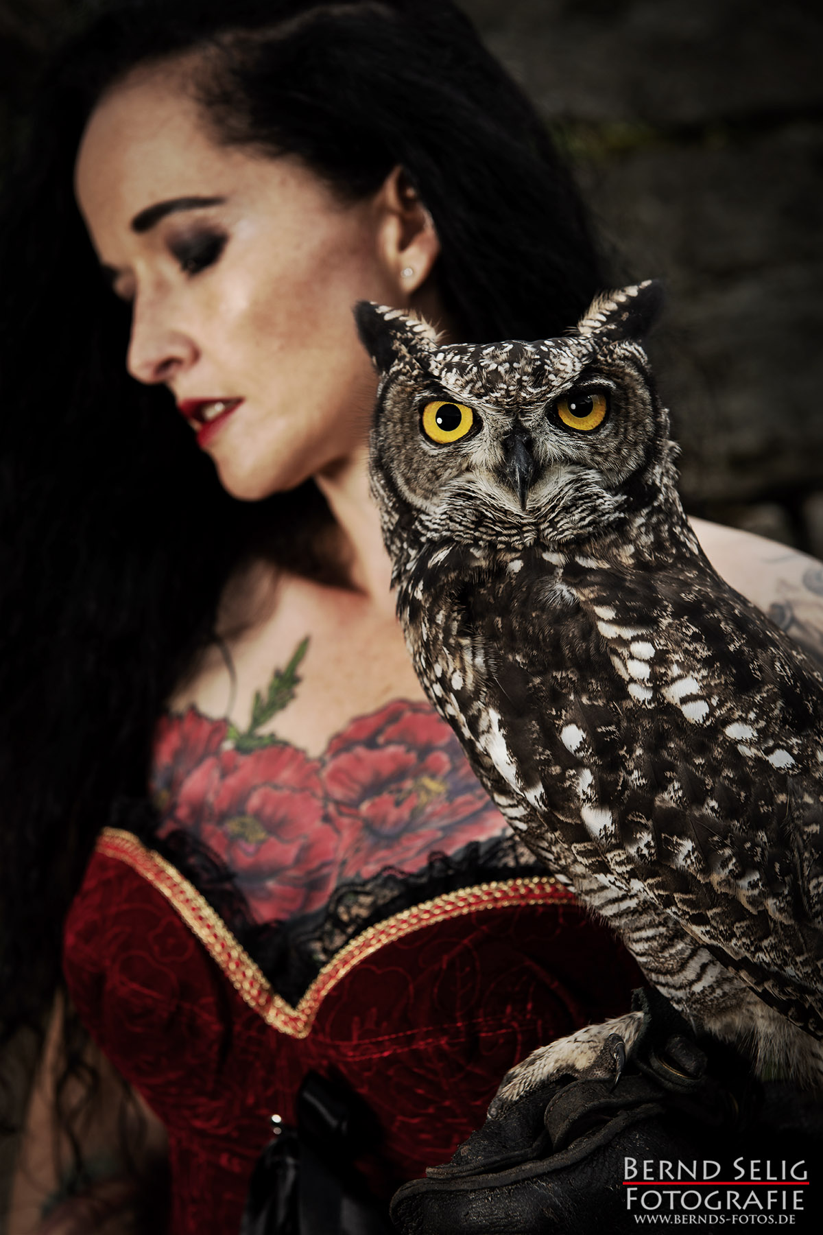 Portaitshooting mit Greifvogel in Detmold